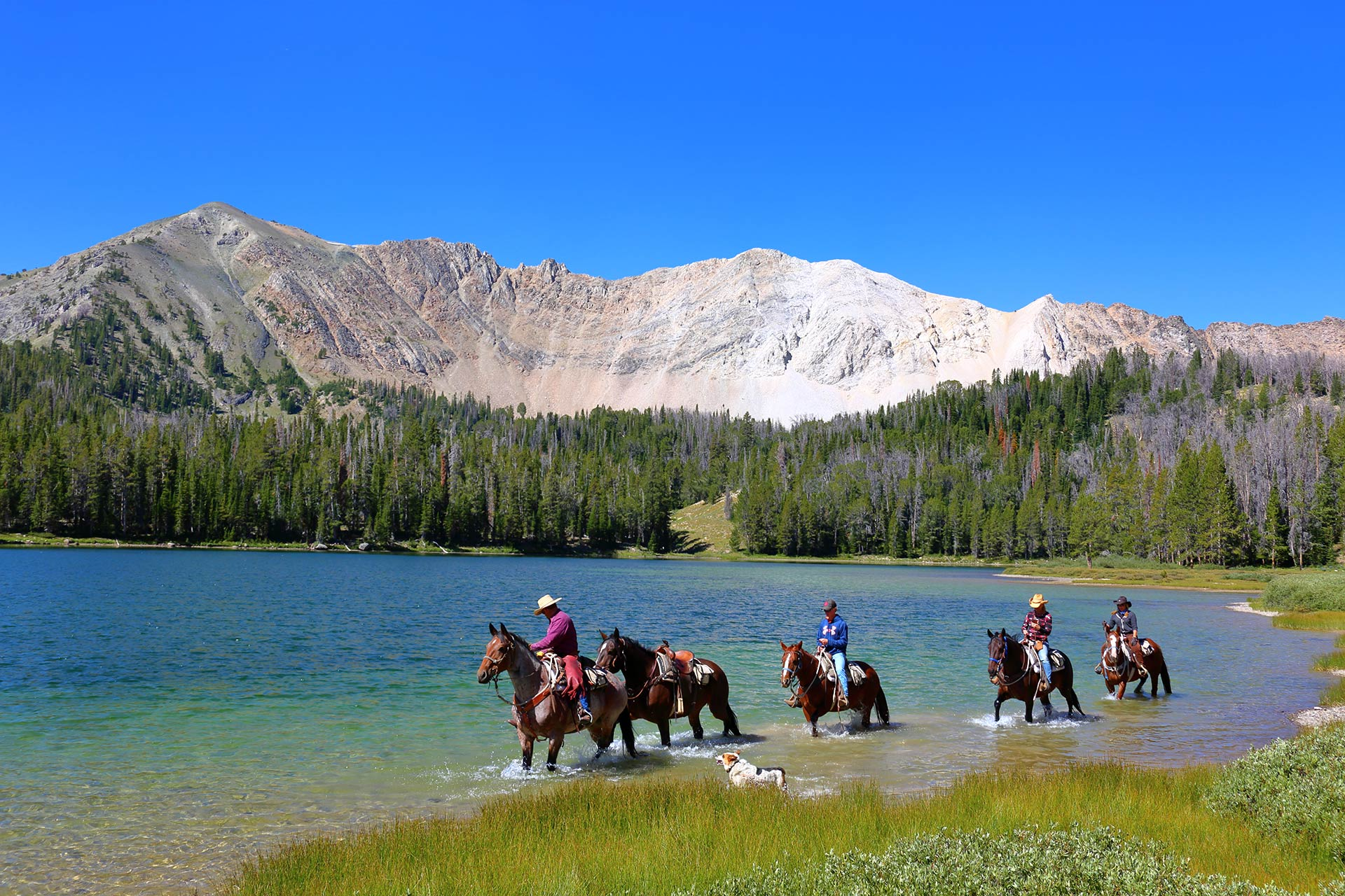 A family horseback ride through the mountain lakes and at the base of the rockies in the sawtooth mountains